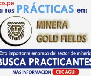 Vacantes para trabajar en MINERA GOLDFIELDS PERU SA 7 Plazas Disponibles