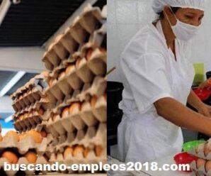 Fabrica Solicita Personal Para Empacar Huevos Ecologicos desde su casa